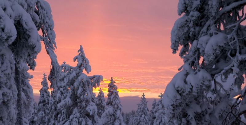 Rovaniemi – A casa di Babbo Natale per l'Immaccolata 2
