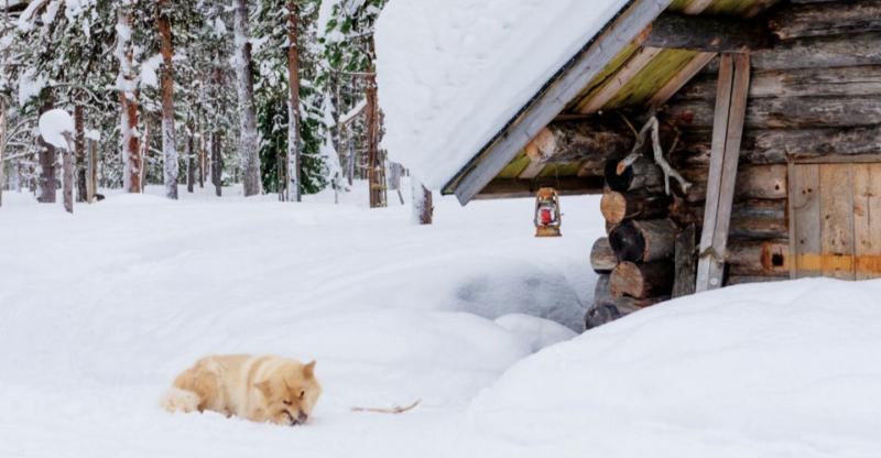 Rovaniemi – A casa di Babbo Natale per l'Immaccolata 3