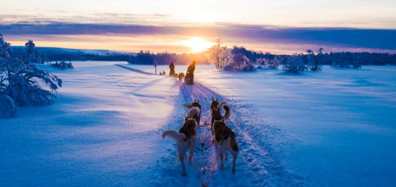 Rovaniemi – A casa di Babbo Natale per l'Immaccolata 7