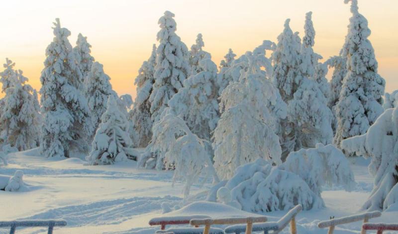 Rovaniemi – A casa di Babbo Natale per l'Immaccolata 6